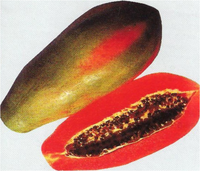 papaya heritage